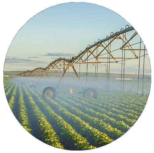 ITP Zola Predosa pompe agricole